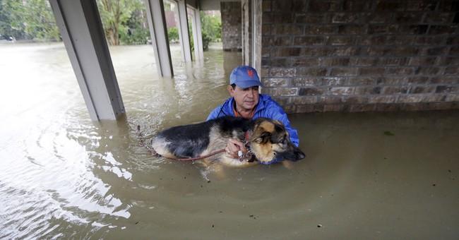 AP PHOTOS: Torrential rains flood vast areas of Houston