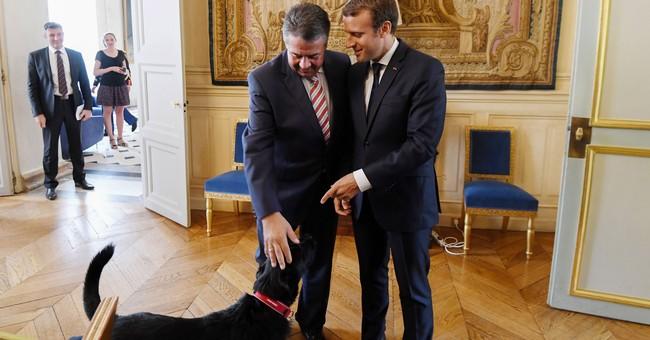 German foreign minister says European unity key to future