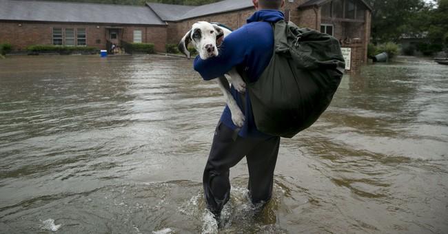 Trump order undermines rebuilding better for future floods