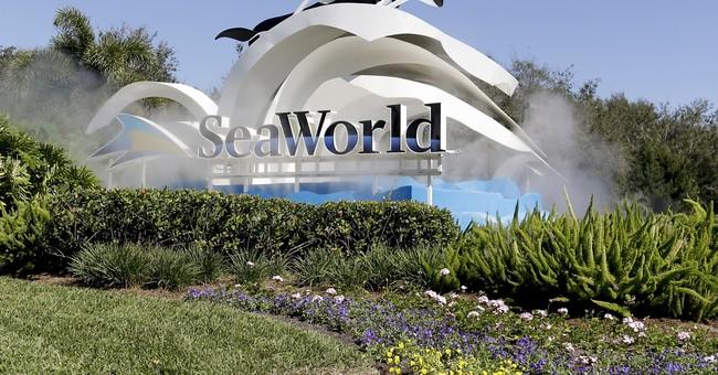 APNewsBreak: SeaWorld seeks restraining order vs. protesters