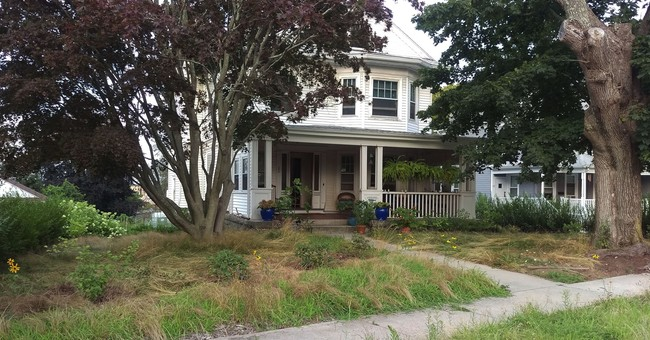 Natural-lawn advocate contests blight citation for her yard