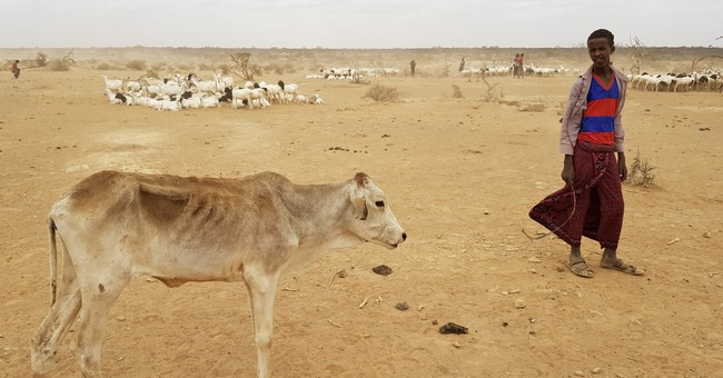 Ethiopia faces worst drought in years as millions at risk