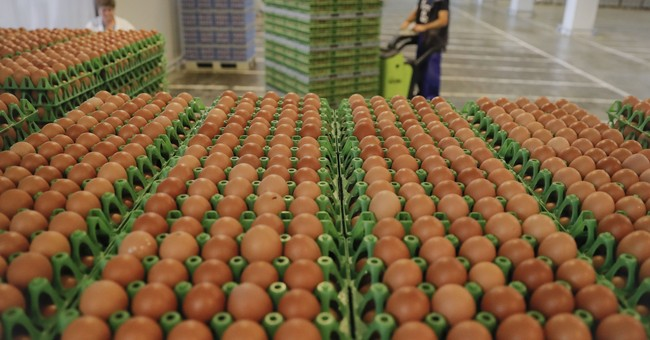 EU says 40 countries now affected in tainted egg scandal