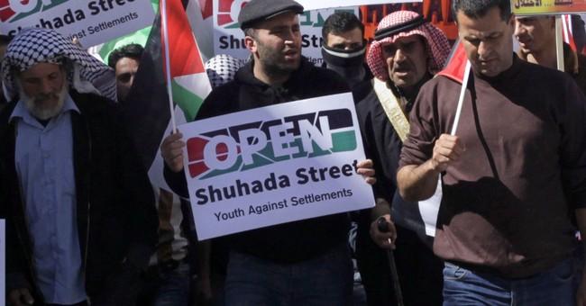 Detained Palestinian activist begins hunger strike