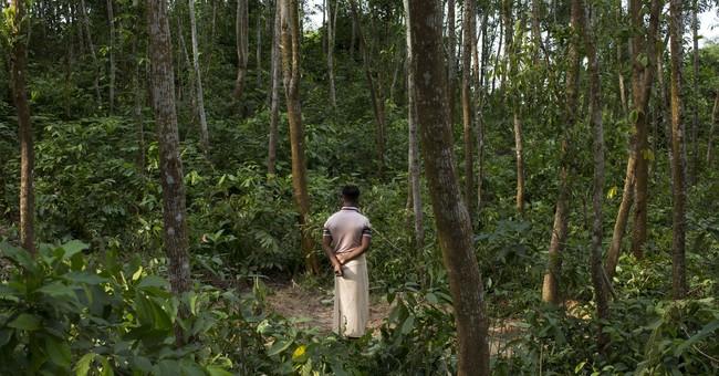 Seeking home's comforts, Rohingya couple make deadly choice