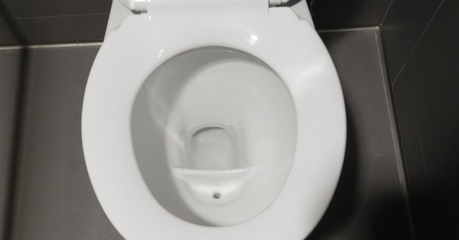 Special toilet at U. Mich. takes aim at urine-to-fertilizer