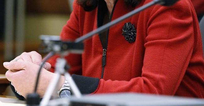 Wisconsin state Sen. Vukmir launches GOP bid for US Senate