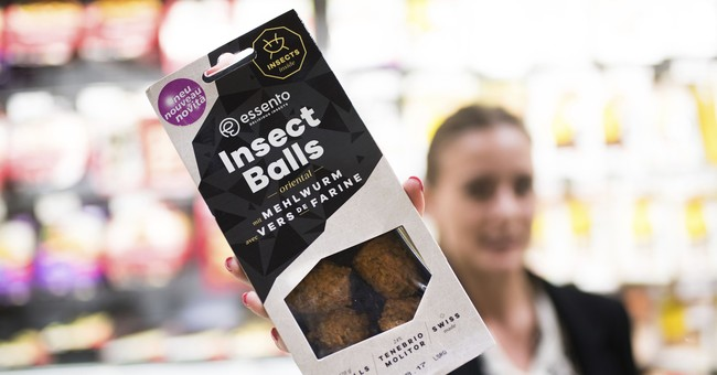 Yuck or yum? Swiss offer insect burgers of mealworm larvae