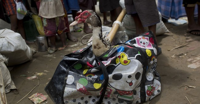 AP PHOTOS: What Rohingya carry as they flee Myanmar violence