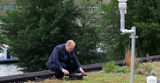 Dutch engineer aims high with latest green roof design