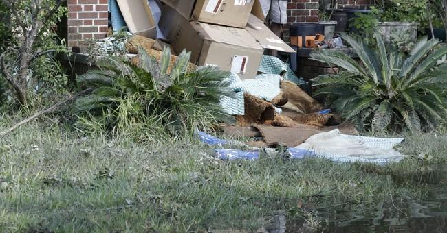 1 elderly couple: A decision to stay put despite Irma floods