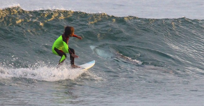 Young Aussie surfer photo bombed by shark that shared wave