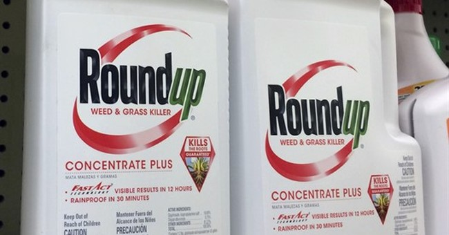 The Latest: Judge says California can put warning on Roundup