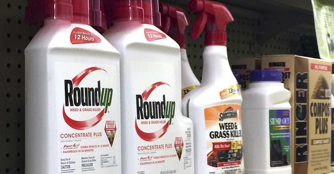 California fights Monsanto on labels for popular weed killer
