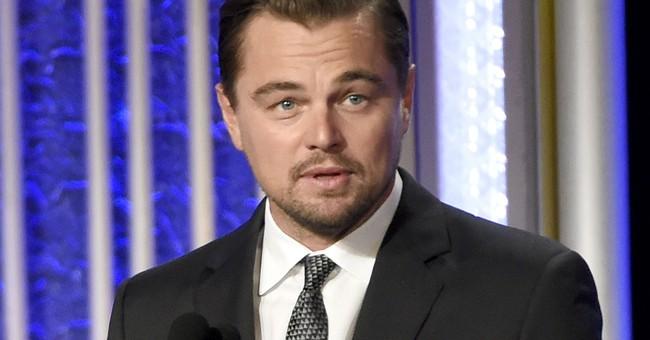 Leonardo DiCaprio foundation awards $20M in eco-grants