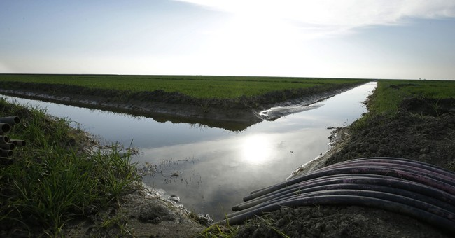 Key California farm district rejects governor's tunnels plan