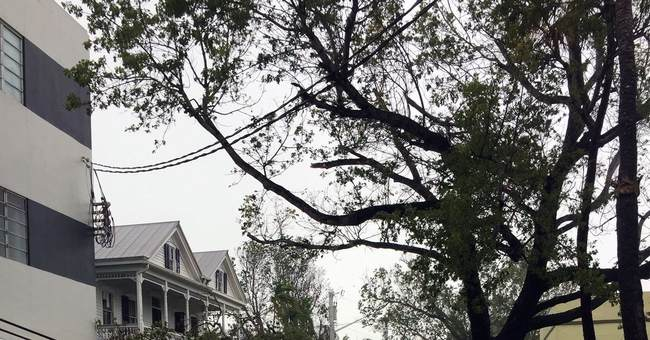 For a new Key West resident, Irma was her welcome-to-town