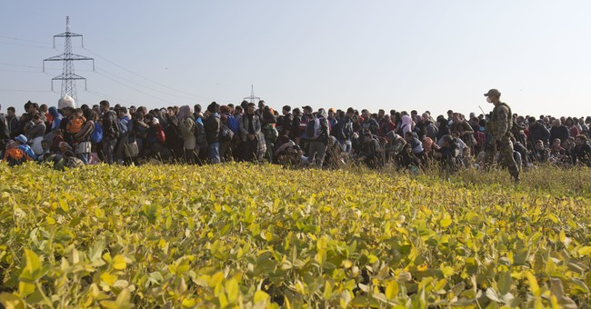 Study shows lengthy waits for asylum applicants in Europe