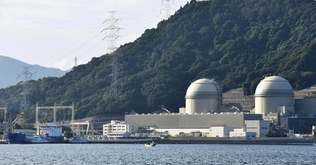 Reprocessed nuclear fuel returned to Japan for reactor use