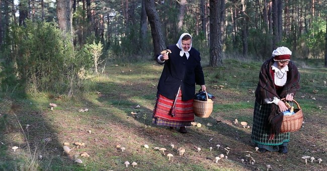 On the hunt: Lithuanians race to pick wild mushrooms