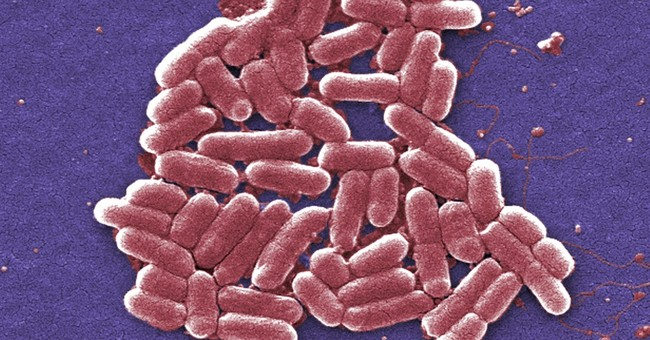 Study: Superbug infections found in Chinese hospitals