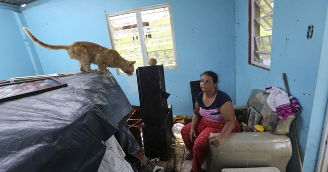 Stories from the aftermath of Hurricane Maria in Puerto Rico