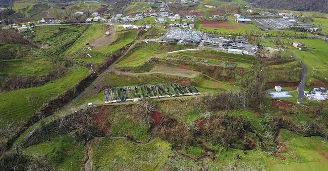 Farmers say Maria wrecked bright spot of Puerto Rico economy
