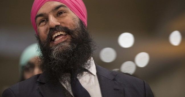 First visible minority wins leadership of fed Canada party