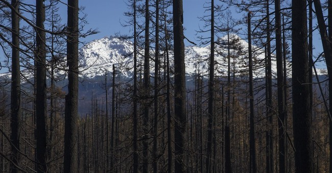 Cool, damp weather brings relief to US wildfire outlook