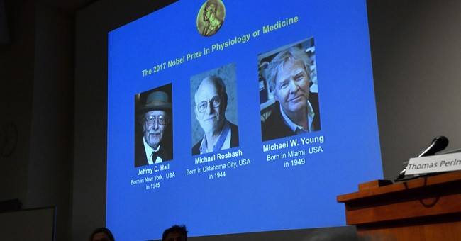 The Latest: Nobel winner Young: Body clocks are the future