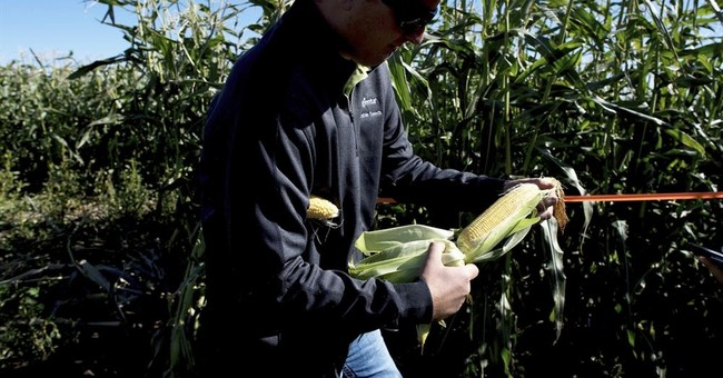 US producer prices rose 0.4 percent in September