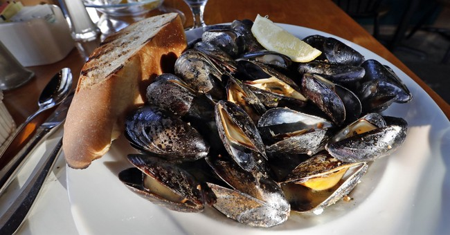 Maine had worst year for mussel harvest in 4 decades in '16