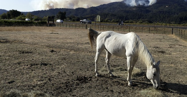 The Latest: More evacuees from California wildfires go home