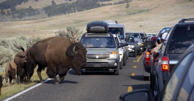 National parks seek fee hike amid struggle to fund repairs