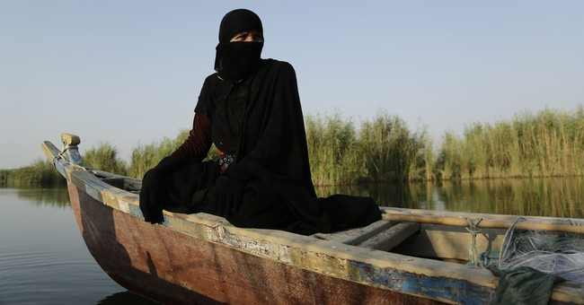 Iraq's vast marshes, reborn after Saddam, are in peril again