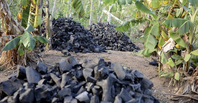 Pervasive charcoal trade getting major rethink in Haiti