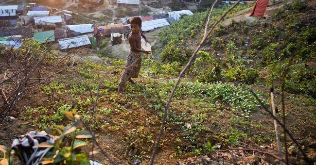 Myanmar military denies atrocities against Rohingya Muslims