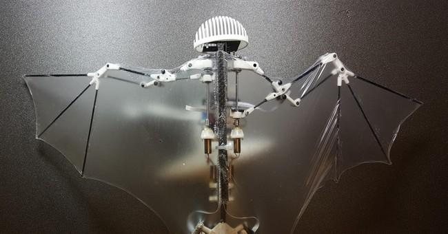 Whoosh! Swish! Meet Bat Bot, the new flying batlike drone