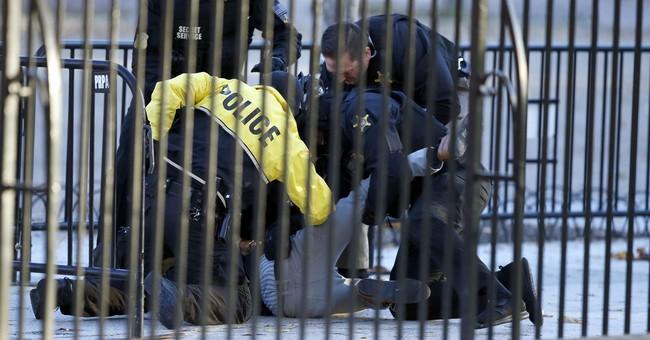 Secret Service apprehends attempted White House fence jumper