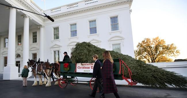 Melania Trump, son Barron receive White House Christmas tree