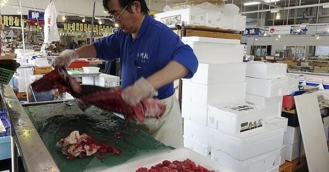Risky stalemate as science battles human fears at Fukushima