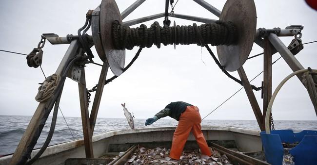 Plan to change New England ocean stewardship up for debate