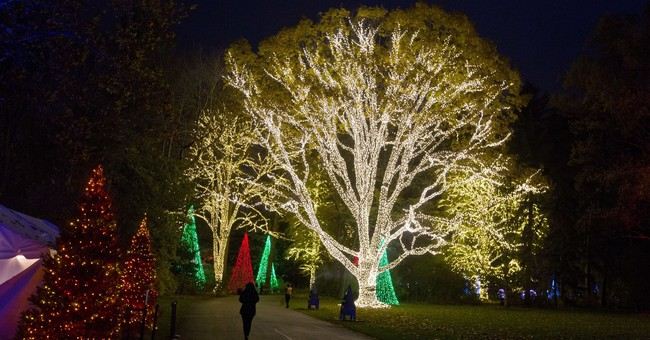 Trees, lights, holiday magic: Christmas events and displays