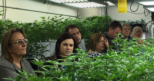 Colorado's pot lessons: Prepare for no help, a lot of smell