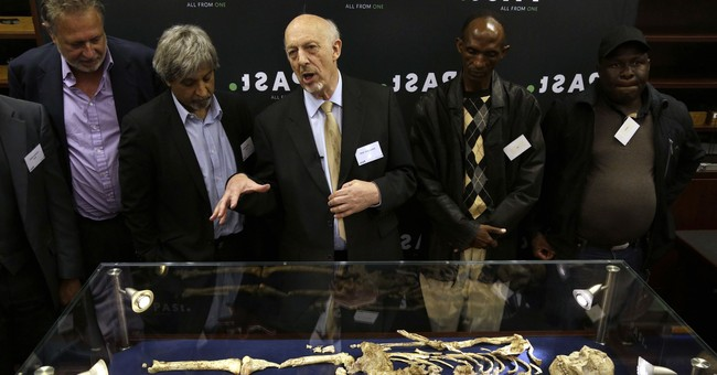 Rare skeleton shown of human ancestor, 3.6 million years old