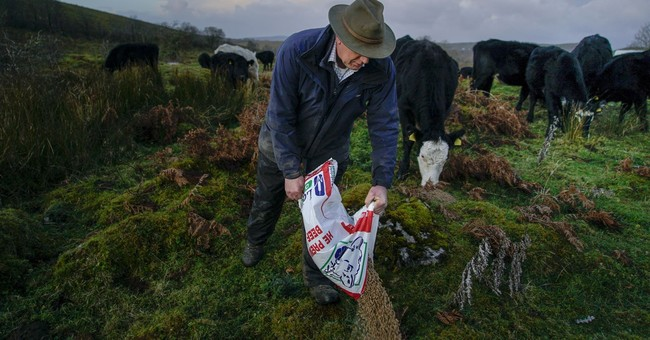Irish border lives and livelihoods hinge on Brexit outcome