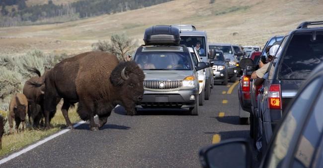 US national parks to slash number of free days for visitors