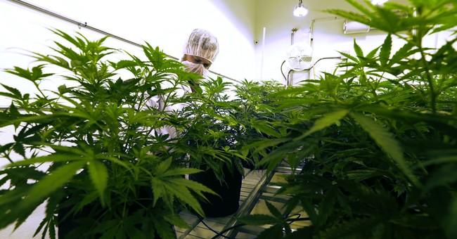 Correction: Medical Marijuana-Texas story