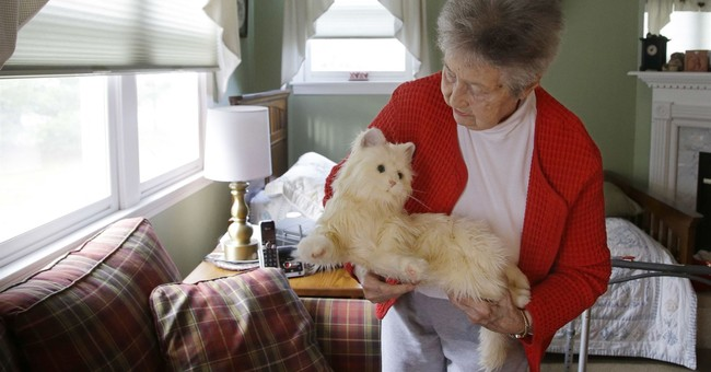 Scientists hope to inject robo-cat with AI to help seniors