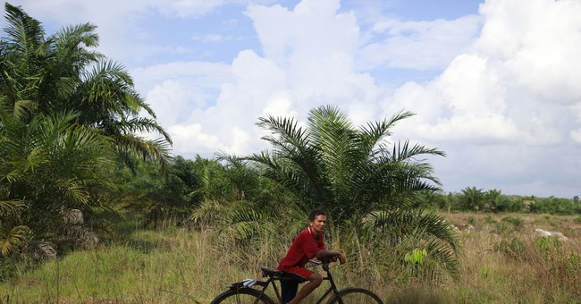 Pulp giant stirs new conflicts with Indonesian villagers